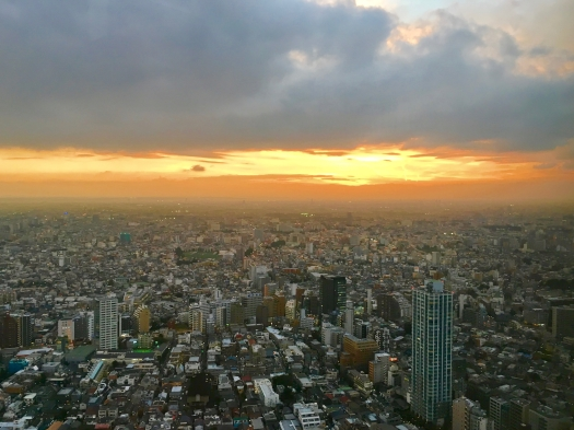 view_from_government_building_shinjuku